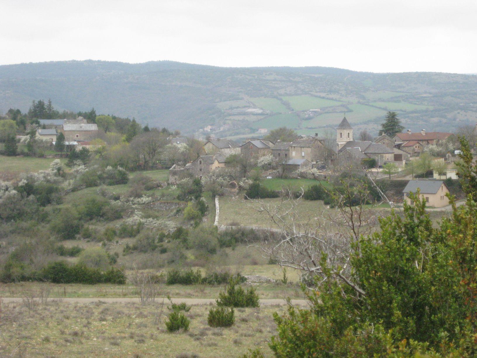http://www.corambe.com/caminarello/IMG_6194.JPG