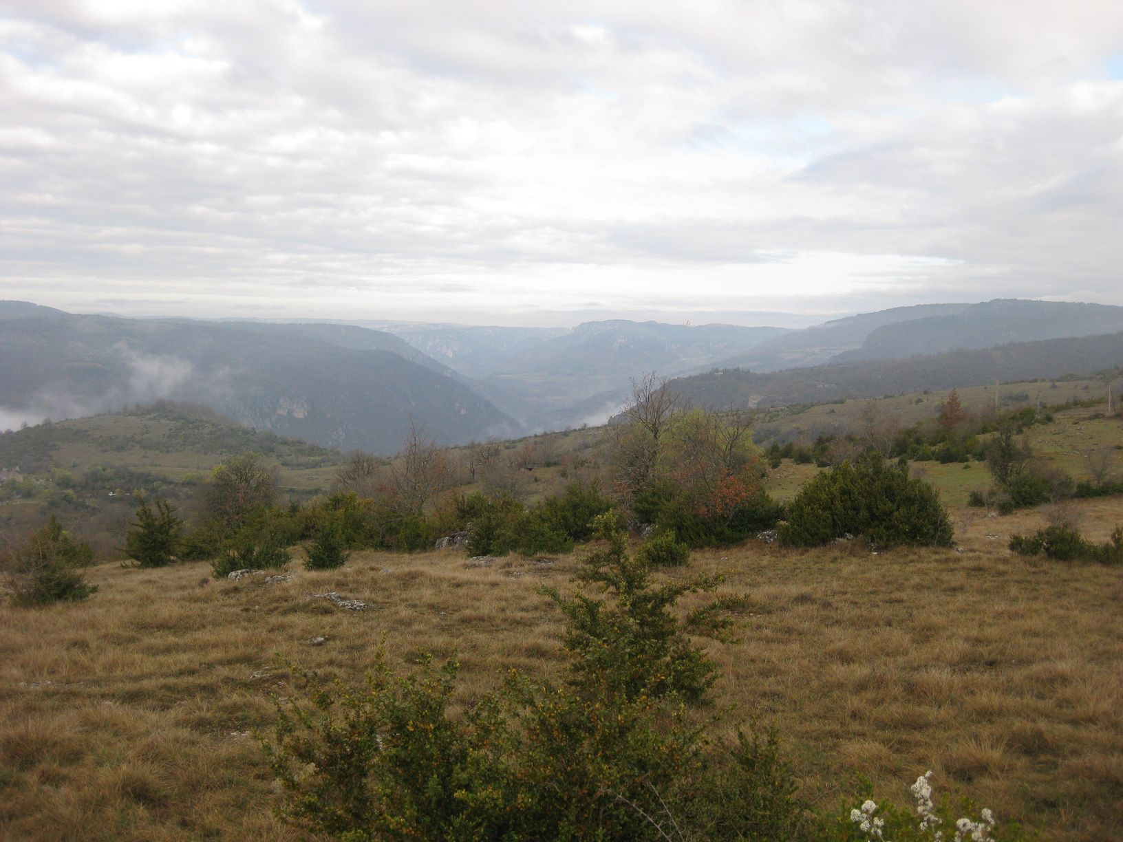 http://www.corambe.com/caminarello/IMG_6197.JPG